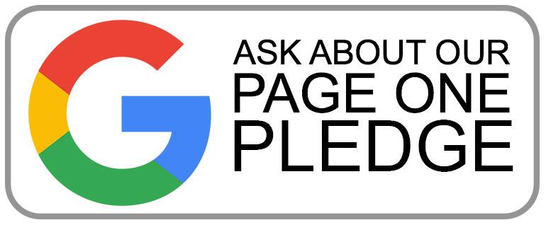 pledge-google